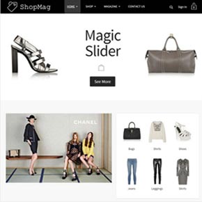 Image from Shopmag template